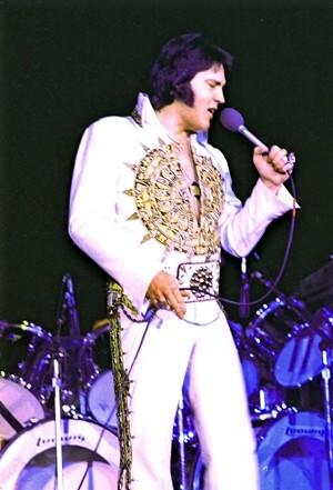 Elvis Memphis To Madison 1977 An Ein Exclusive Spotlight