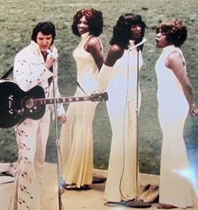 Image result for Elvis Presley sweet inspirations